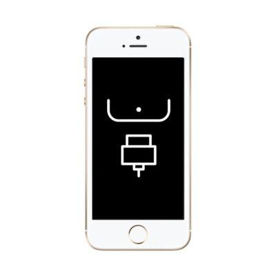 Reparação Porta de Ligação (Dock) – iPhone 5S
