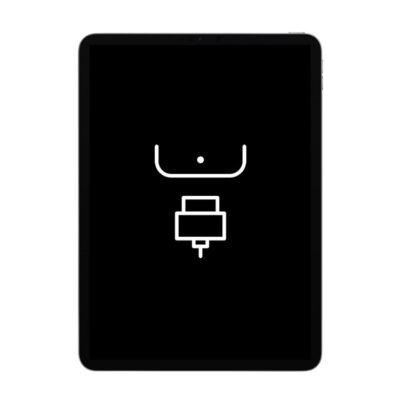 Reparação Porta Dock – iPad Pro 12.9